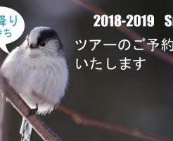 20181120_1